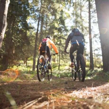 Biker couple riding mountain bike in the forest at countryside