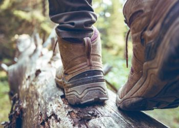 "hiking boots close-up. girl tourist steps on a log""n"